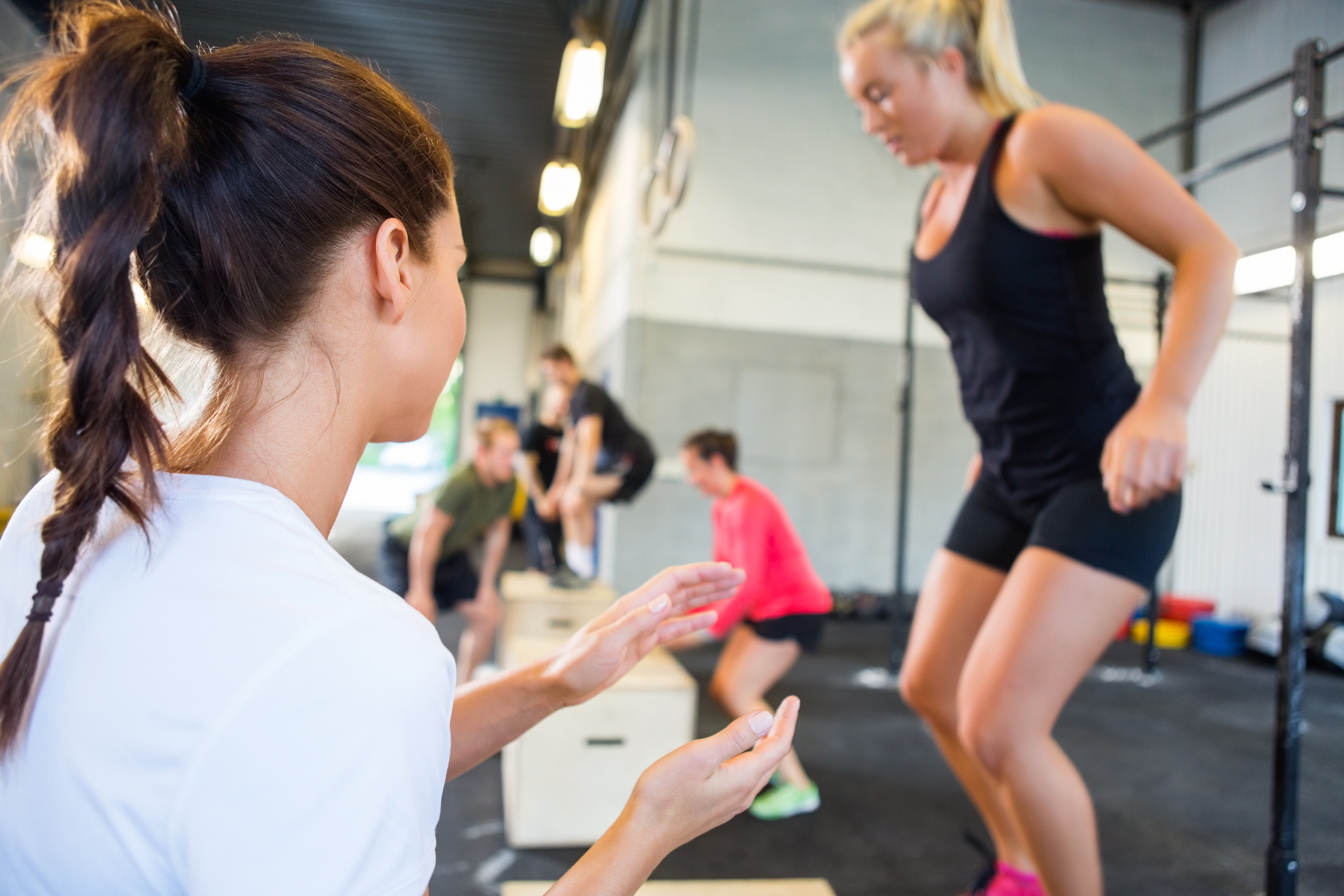 Websites universal training academy free as part of our personal training certification mentorship 1betcityfo Image collections